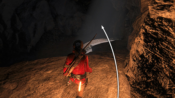 how to use poison arrows tomb raider ps4