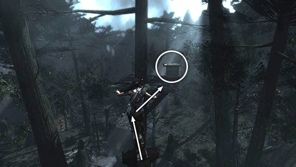 TOMB RAIDER: Coastal Forest - Treasure Map and Other Goodies